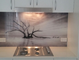 Dead Tree Image Printed on Glass Splashback