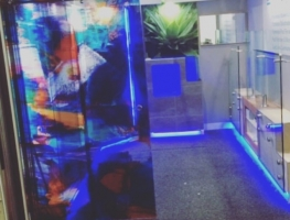 Digitally Printed PET Film Laminated Glass Door