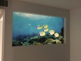 Underwater Marine Life - Digital Printed Laminated Glass