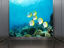 Digital Printed Toughened Glass for Lift Cars
