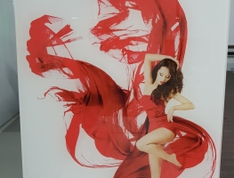 Lady in Red Digital Printed on Glass Panel by Graphic Glass Services Qld