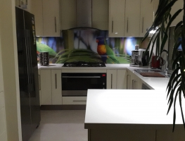 Digitally Printed Bird Glass Splashback by Graphic Glass Services