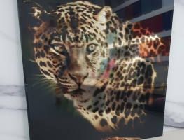 Digital-Printed-Pet-Film-Interlayer-with-mirror-by-Graphic-Glass-Services