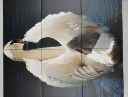 Mother Swan with Baby Digital Printed Ceramic Tiles by Graphic Glass Services